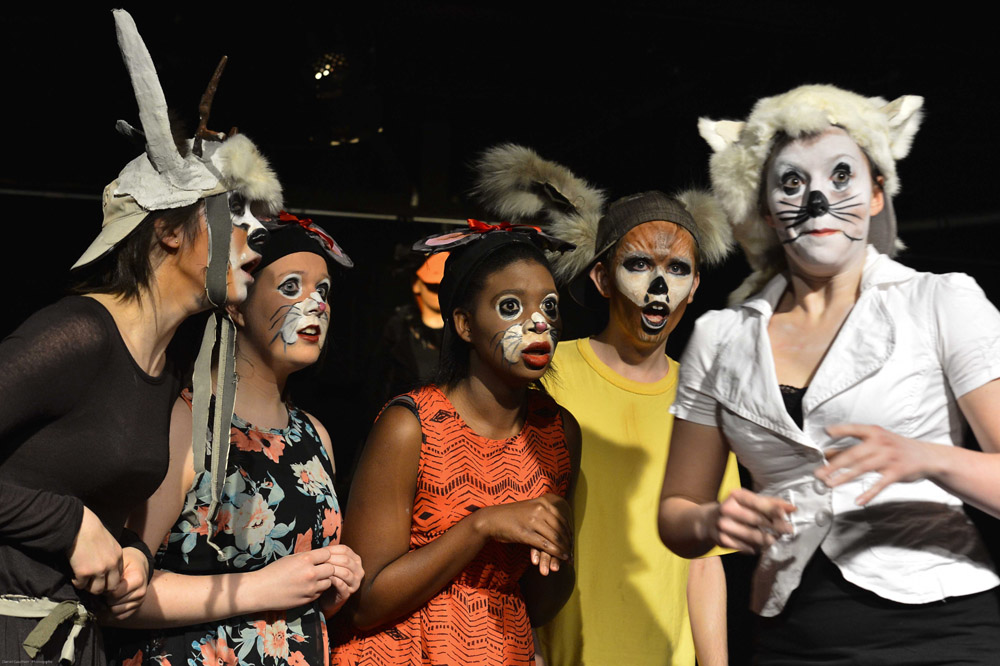 comedie animaux mal avenant theatre